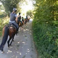 Stal Hassing - ponykamp